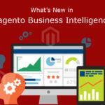 Magento Business Intelligence - creative Encode